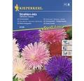 Semințe de flori Kiepenkerl mix Ochiul boului