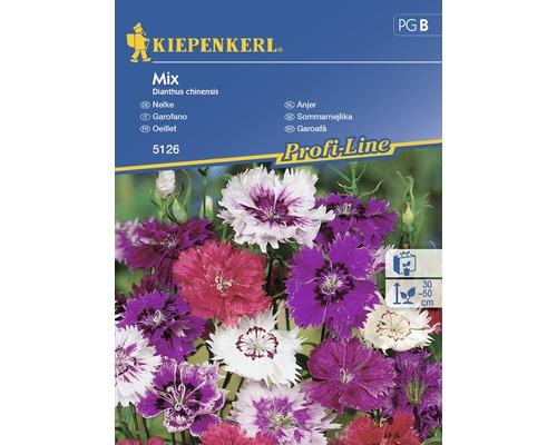 Seminte de flori Kiepenkerl mix Garofite