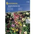Seminte mix flori de umbra Kiepenkerl