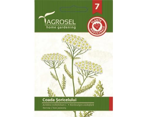 Seminte de Coada Soricelului PG7 Agrosel