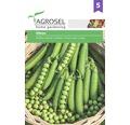 Seminte de legume Agrosel, mazare Oltena PG5