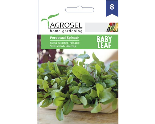 Seminte de legume Agrosel, sfecla Baby Leaf PG8