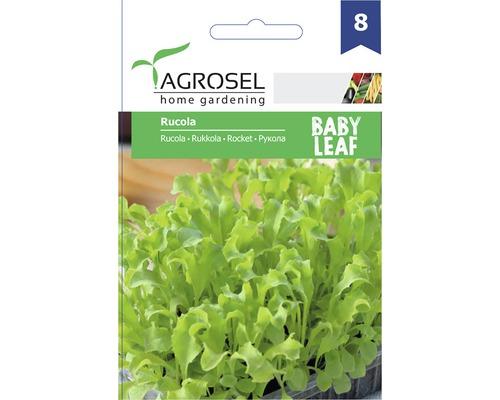 Seminte de salata Agrosel, rucola Baby Leaf PG8