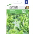 Seminte de salata Agrosel Lollo Bionda Baby Leaf PG8
