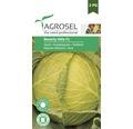 Seminte de legume Agrosel, varza Beverly Hills F1 PG3