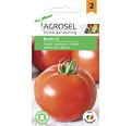 Seminte de tomate Buzau 22 PG2 Agrosel