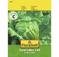 """FloraSelf semințe de salată verde """"Grandes Lago"""""""