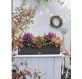 Jardinieră Lechuza Balconera Cottage, plastic, 80x19x19 cm, granit