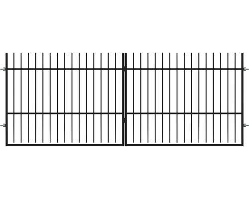 Poarta dubla Cindrel 400 x 200 cm