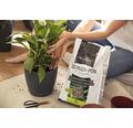 Substrat pentru plante Lechuza Pon 6 l
