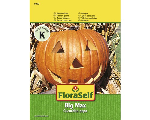 "FloraSelf seminte de dovleac ""Big Max"""