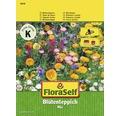 Mix semințe pentru flori FloraSelf 'Covor de flori'