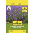 "FloraSelf seminte de levantica Hidcote Blue Strain ""Lavandula angustifolia"""