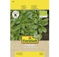 FloraSelf Bio semințe de salată-de-câmp