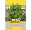 FloraSelf Bio seminte de busuioc genovez