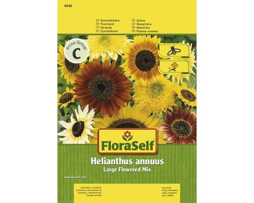 """FloraSelf seminte de floarea-soarelui, flori uriase """"Helianthus annuus"""""""