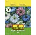 FloraSelf seminte de flori Chica voinicului