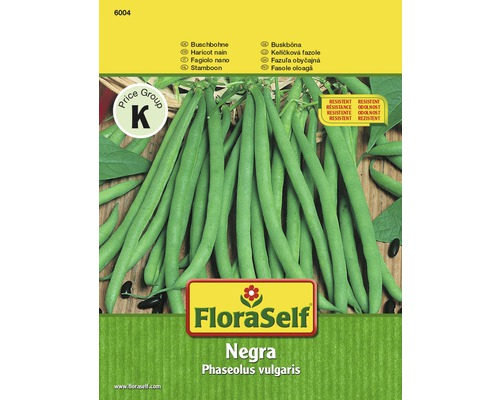 """FloraSelf seminte de fasole oloaga """"Negra"""""""