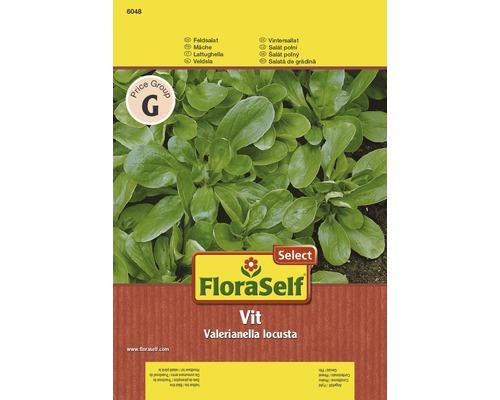 """FloraSelf semințe de salată de grădină """"Vit"""""""