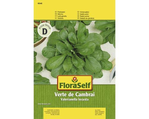 """FloraSelf seminte de salata de gradina """"Verte de Cambrai"""""""