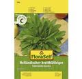 FloraSelf seminte de salata de gradina