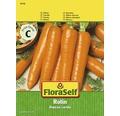 FloraSelf seminte de morcov Rotin