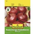 FloraSelf seminte de ceapa rosie Braunschweiger