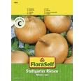 FloraSelf seminte de ceapa Uriasul de Stuttgart