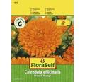 "FloraSelf seminte de galbenele ""Calendula officinalis Prinzess"""