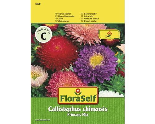 """FloraSelf seminte de flori mix ochiul boului """"Callistephus chinensis"""" Princess"""