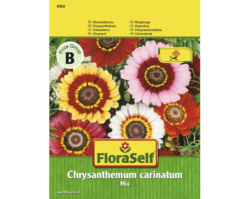 "FloraSelf seminte de flori mix de crizanteme ""Chrysanthemum carinatum"""