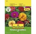 """FloraSelf seminte de floare-de-piatra """"Portulaca grandiflora"""""""