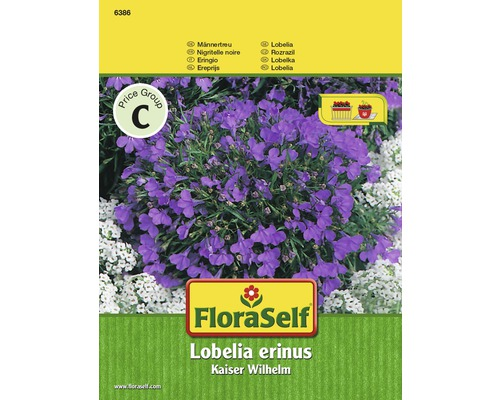 FloraSelf seminte de lobelia Kaiser Wilhelm