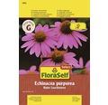 """FloraSelf seminte de """"Echinacea purpurea"""""""