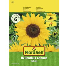 FloraSelf semințe de floarea soarelui Holiday
