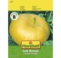 """FloraSelf seminte de dovleac """"Gele Reuzen"""""""