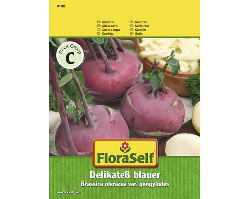 FloraSelf semințe de gulie albastră