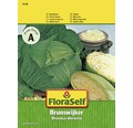 FloraSelf seminte de varza alba de toamna