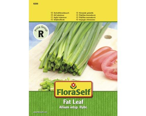 FloraSelf seminte de arpagic