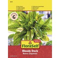 FloraSelf seminte de salata, macris sangeriu