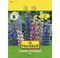 """FloraSelf seminte de flori amestec de lupin """"Lupinus hartwegii"""""""
