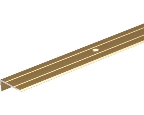 Profil scari 25x20 aluminiu 1m