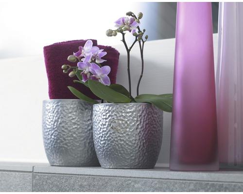 Masca pentru flori Soendgen Boston, ceramica, Ø 19 cm, argintiu