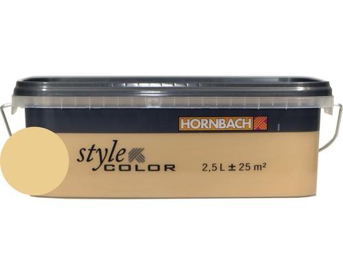 Vopsea lavabila StyleColor skin 2,5 l