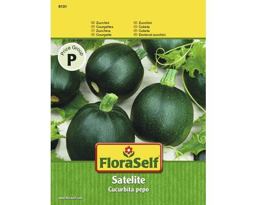 """FloraSelf seminte de dovlecei verzi"""" Satelite"""""""