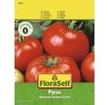 FloraSelf seminte de rosii Pyros