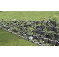 Jardiniera Semmelrock din beton gri 30x20 cm