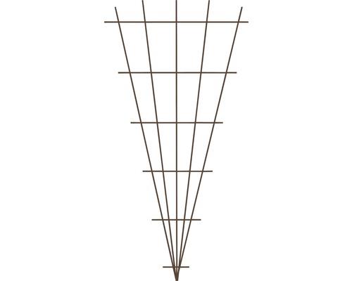 Spalier evantai, 75x150 cm, maro