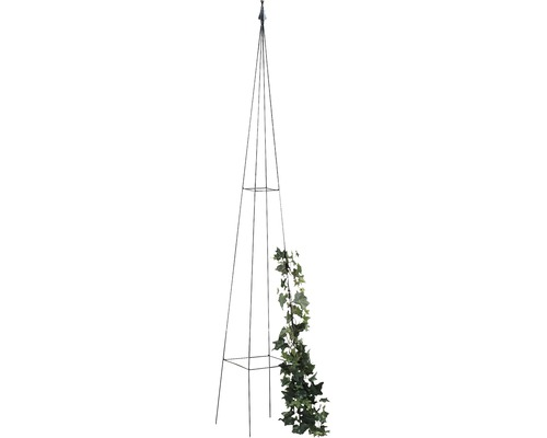 Obelisc pentru plante cățărătoare Levin, metal, 23x23x150 cm, negru