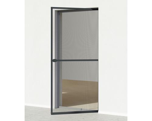 Plasă de țânțari cu ramă din aluminiu pentru ușă, antracit, 100x210 cm